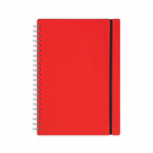 Recycled Leather - Ruled Notebook - Red